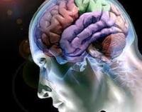 neuropsicologica